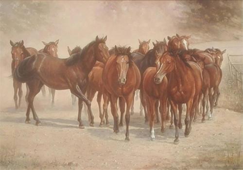 Dick de Vries - Paarden