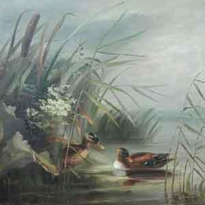 Kiehl – Eenden - NL Antiques